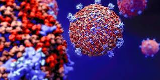 Suspension activités - Coronavirus